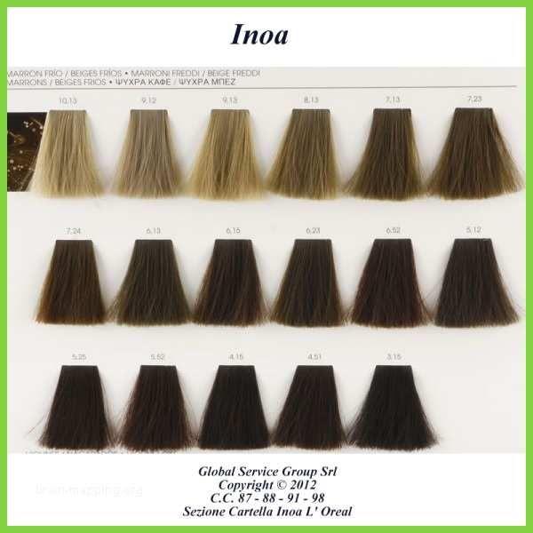 Lot Of 27 New Loreal Inoa Supreme Hair Color Paradigmatic Loreal Inoa Supreme Color Chart Hair Color Chart Loreal Hair Color Hair Color