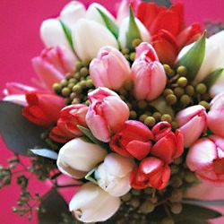 Fie ca primavara iubirii sa iti umple sufletul cu bucuria si parfumul florilor sale. Iti doresc un 8 Martie cat mai special! http://ofelicitare.ro/felicitari-de-8-martie/8-martie-cat-mai-special-494.html