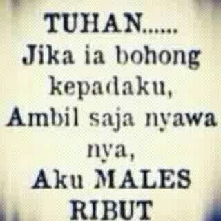 Males ribut