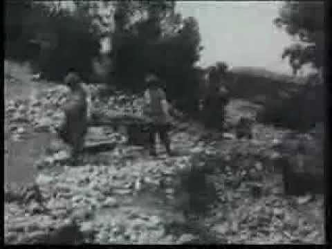 Pieśń wojskowa Czerwone Maki - została napisana na cześć żołnierzy poległych w walkach o Monte Casino