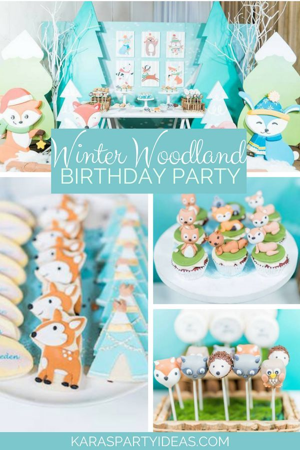 Winter Woodland Birthday Party Winter Birthday Parties Winter