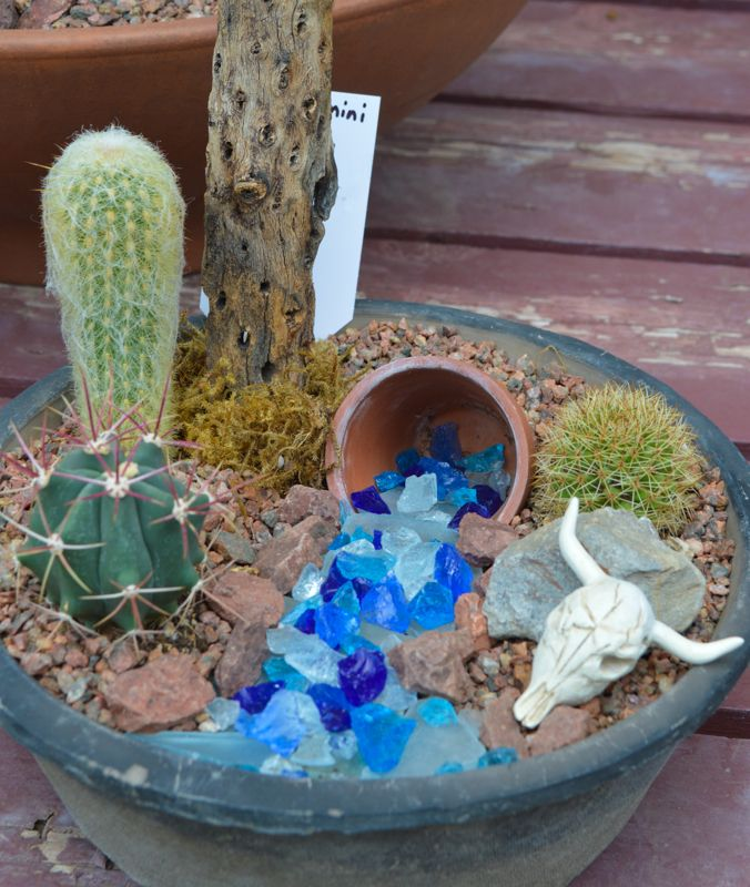 "Miniature potted Southwestern garden with ""flowing water"""