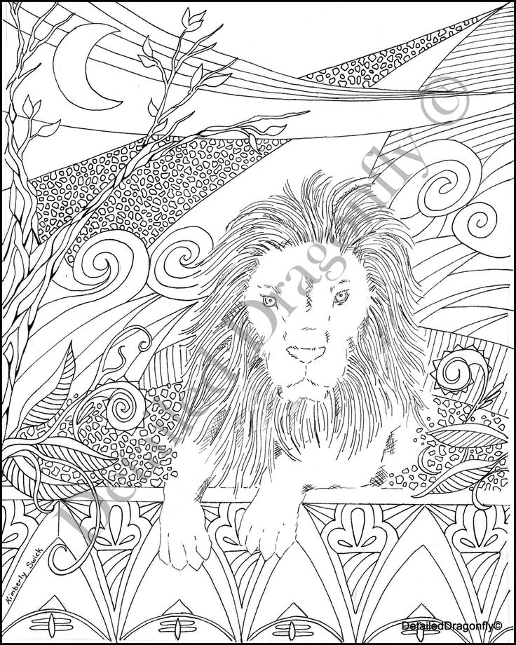 lion coloring page boys coloring page adult coloring page