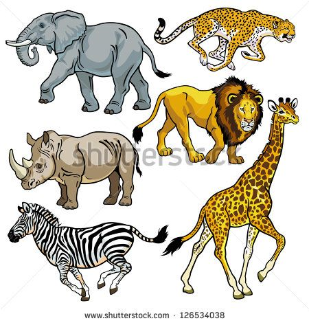 set with africa animals,beasts of savanna,pictures isolated on white background,vector illustration - stock vector