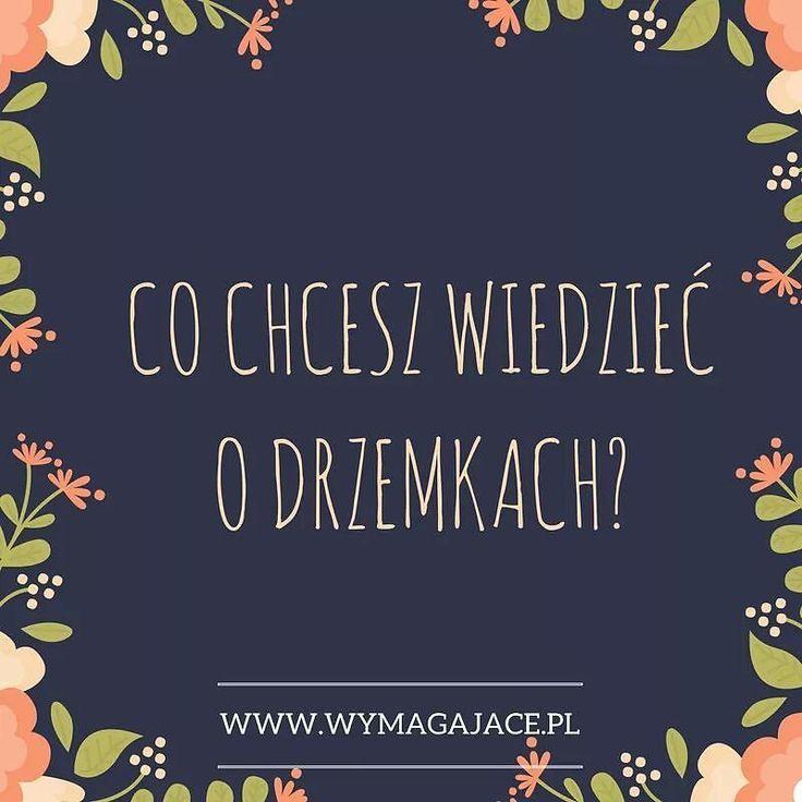 Zbieram pytania do nowego posta DRZEMKI - FAQ #instamatki co byście chciały wiedzieć o drzemkach? #instamama #instababy #jestemmamą #jestembojestes #jestembojesteś #mamablog #mamapsycholog #mamapsycholożka #wymagajace #highneedbaby