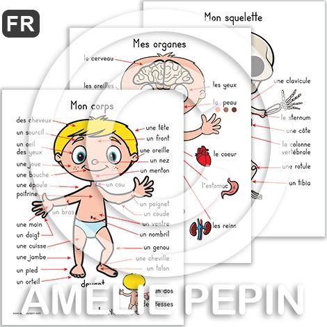 Fichiers PDF téléchargeables Langue: français En couleurs et en noir et blanc 5 pages par fichier Taille d'une page: 8,5 X 11 po. Contient 5 affiches: - Le corps humain - Agrandissement des yeux, de la bouche et d'une main - Le squelette - Les organes - Les muscles, les veines et les artères, les nerfs