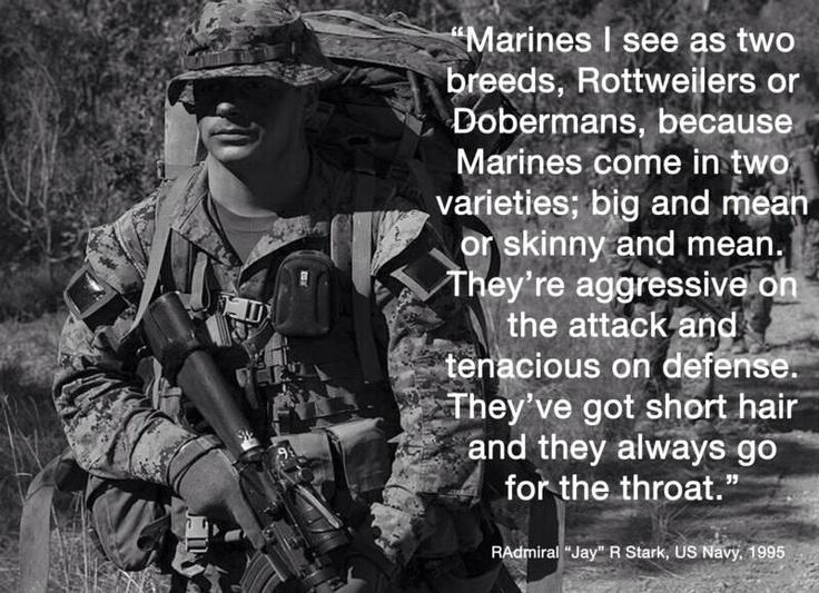 Marines Quotes Best 25 Marine Corps Quotes Ideas On Pinterest  Usmc Quotes .