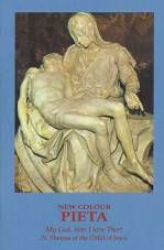 This is an amazing little prayer book - the 15 prayers of St Bridget really help one to understand the Passion of Our Lord and the pain our sins caused Him. The Pieta Prayer Booklet And The 15 St. Bridget Prayers