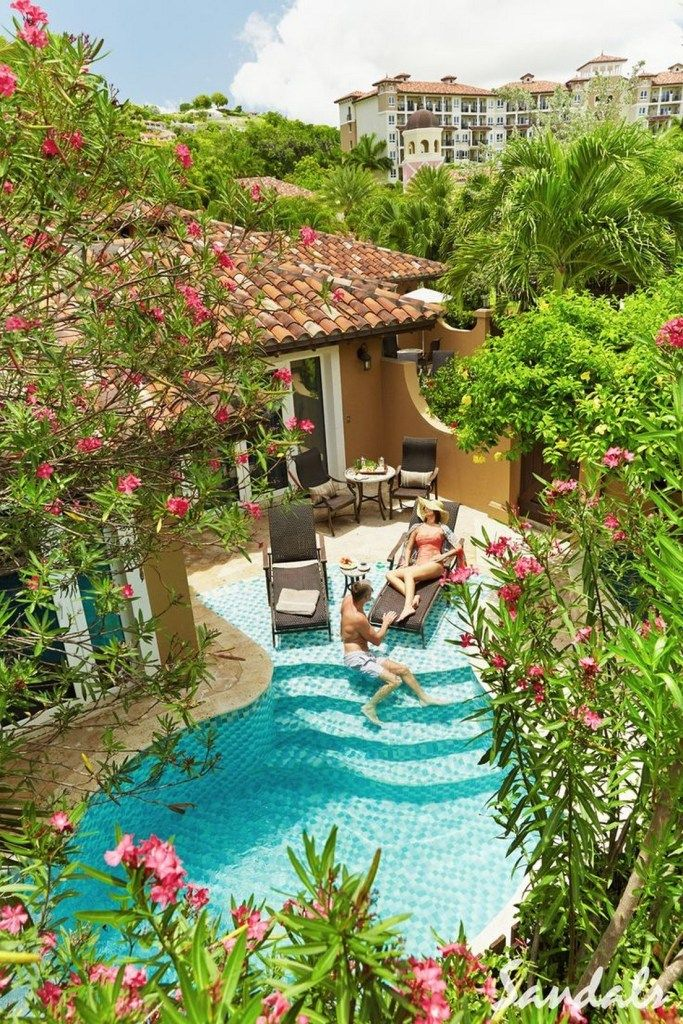 41 Suitable Plants Grow Beside Swimming Pool In Your Home