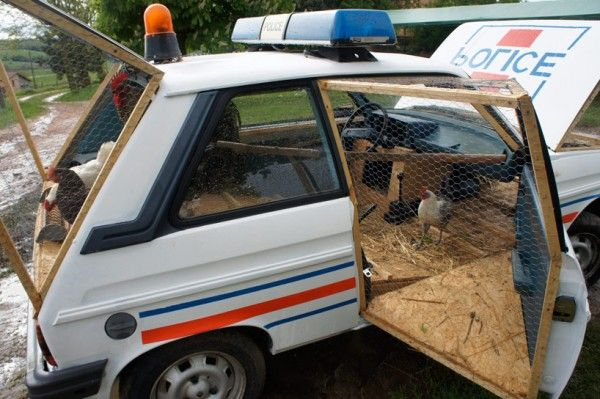 For his latest project, French artist Benedetto Bufalino has reconstructed a 1970s French police car into a fully-functioning chicken coop fit for a farm. 'la voiture de police poulailler'…