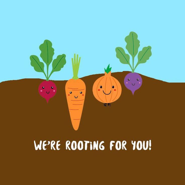 we're rooting for you