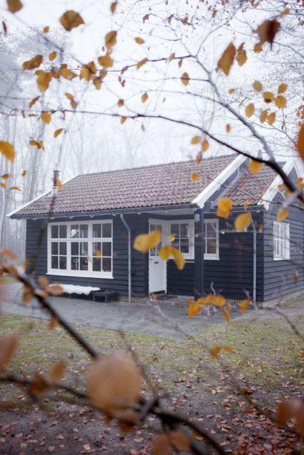 #boshuisnijhildenberg Huis midden in de bossen voor 8 personen