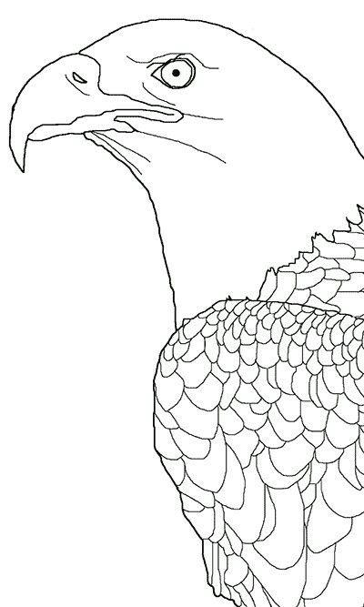 Mejores 9 imágenes de Eagle Embroidery Patterns en Pinterest ...