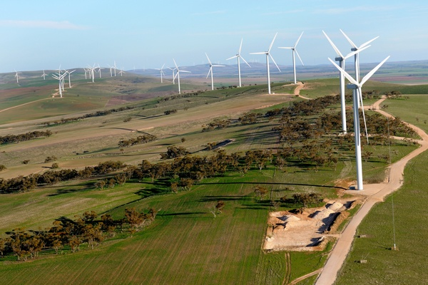 #Wind farm at Clements Gap in South Australia #renewable #energy