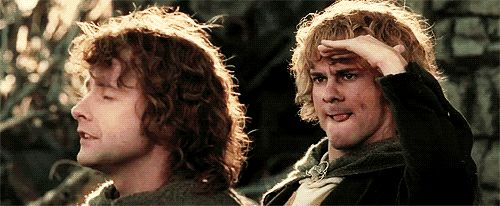 """Merry and Pippin 