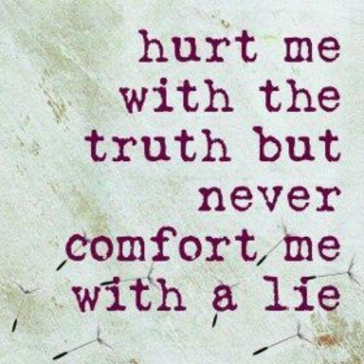 I Hate Lies Quotes: I Hate Liars