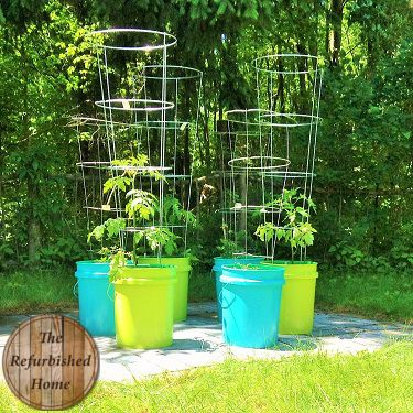 Tomato Planters From Buckets, Using Spray Paint.