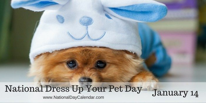 National Dress Up Your Pet Day - January 14
