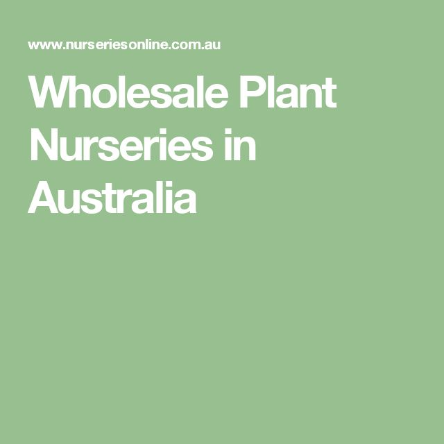 Wholesale Plant Nurseries in Australia