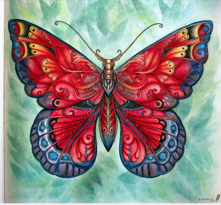Big Butterfly, Magical Jungle, Johanna Basford