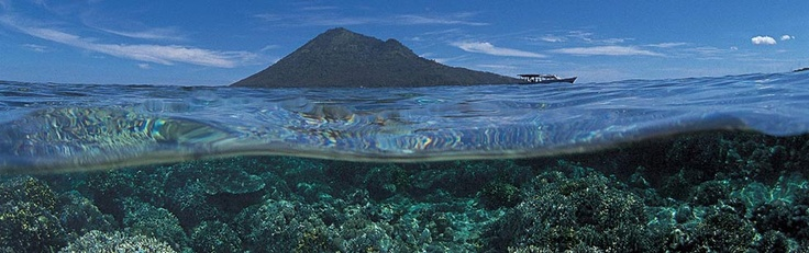 Bunaken, lovely paradise island and awesome diving!!