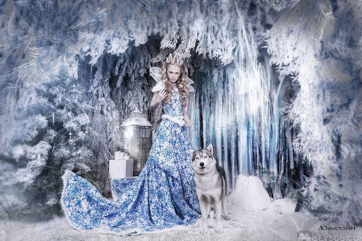 Снежная королева и сибирские хаски | Фото хаски и маламуты