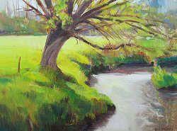 Wilg over de beek | schilderij van een landschap in olieverf van Hans Musters | Exclusieve kunst online te koop in de webshop van Galerie Wildevuur