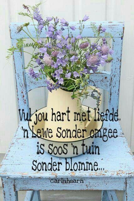 Vul jou hart... lewe x tuin #Afrikaans #Analogies __carinhearn
