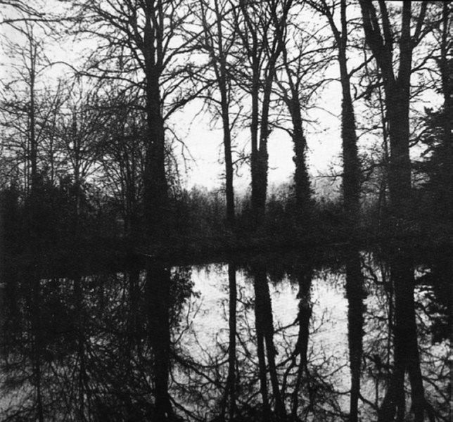 17 best images about william henry fox talbot on pinterest for Arboles en invierno