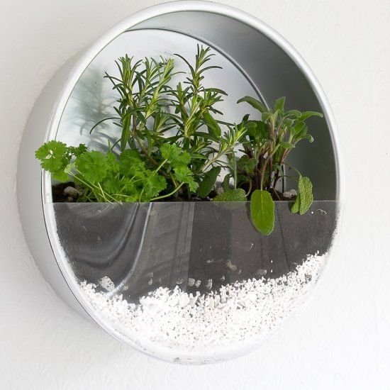 Repurpose your old baking tins and make a herb planter for your kitchen!
