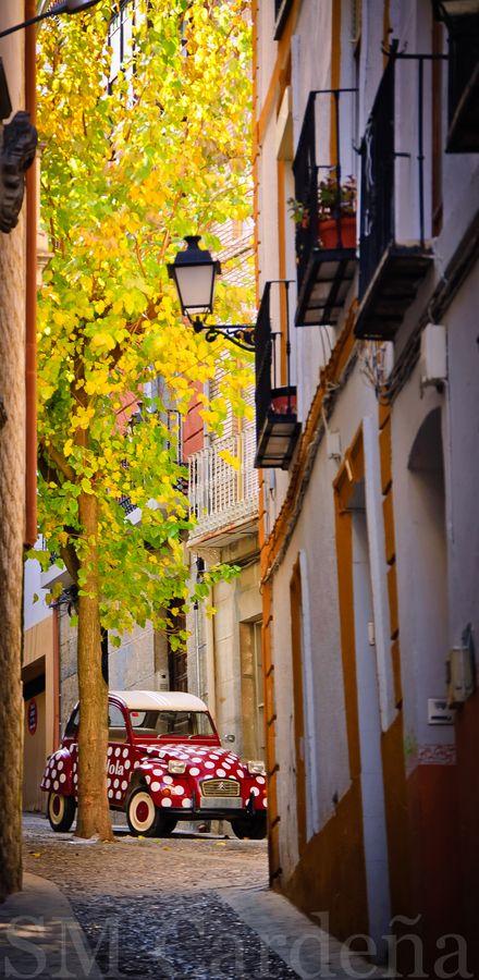 'Funny car in the streets of Spain' said previous pinner • citroen 2CV club