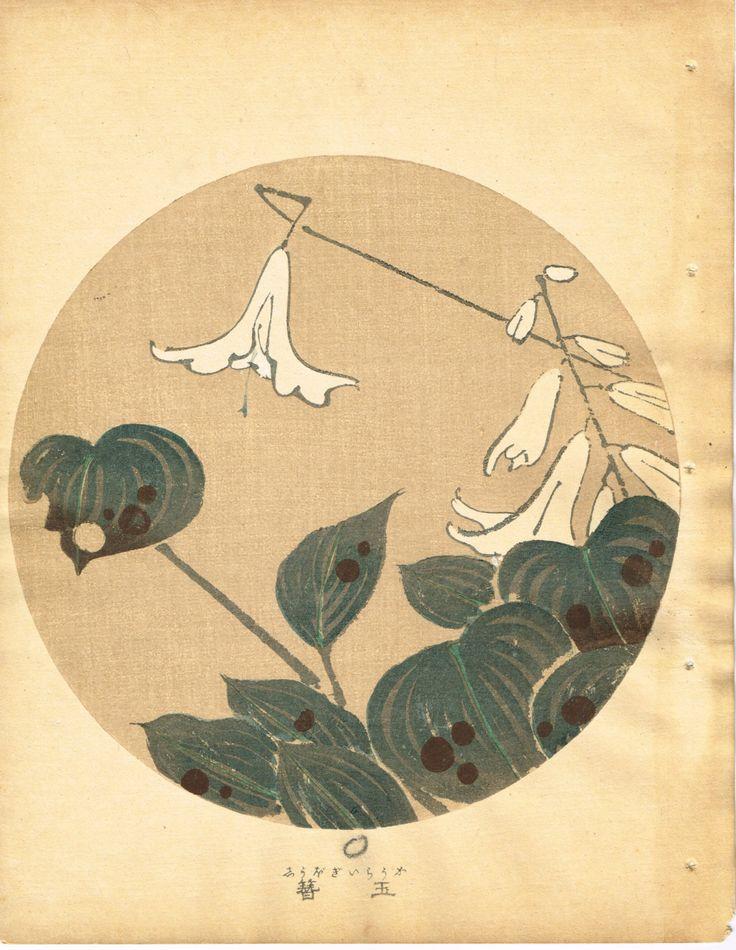 """Japanese antique woodblock print Ito Jakuchu """"Hosta from Jakuchu gafu"""""""