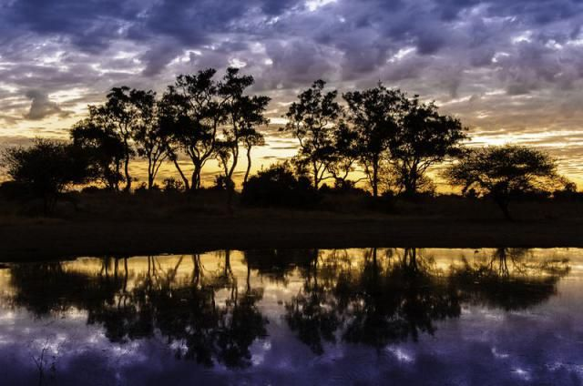 Discover the beauty of Botswana!