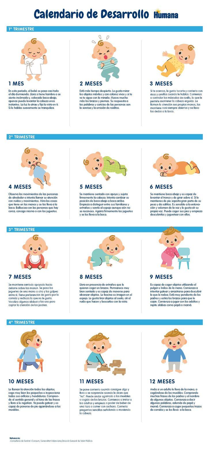 mes a mes de bebe