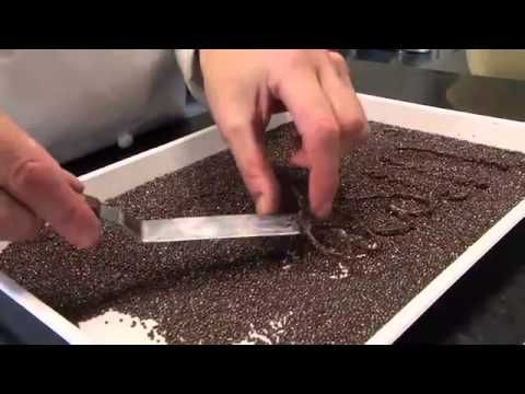 Chocolate Tips and Ideas from Callebaut Chocolate
