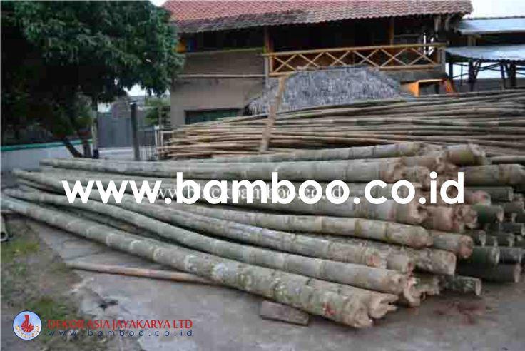 Bamboo Pole - 03