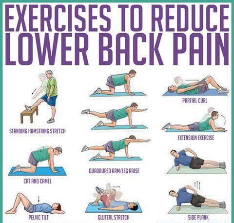 Exercises To Reduce Lower Back Pain, Daily Health Tips, Healthy Lifestyle Tips, Pictures