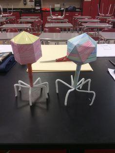 Bacteriophage cut out for biology http://www.ellenjmchenry.com/homeschool-freedownloads/lifesciences-games/virusmodels.php
