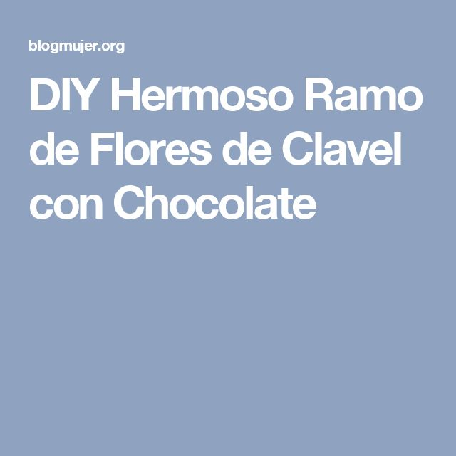 DIY Hermoso Ramo de Flores de Clavel con Chocolate