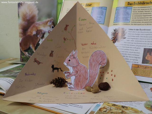 Fantasietruhe: Eichhörnchen-Triaramas