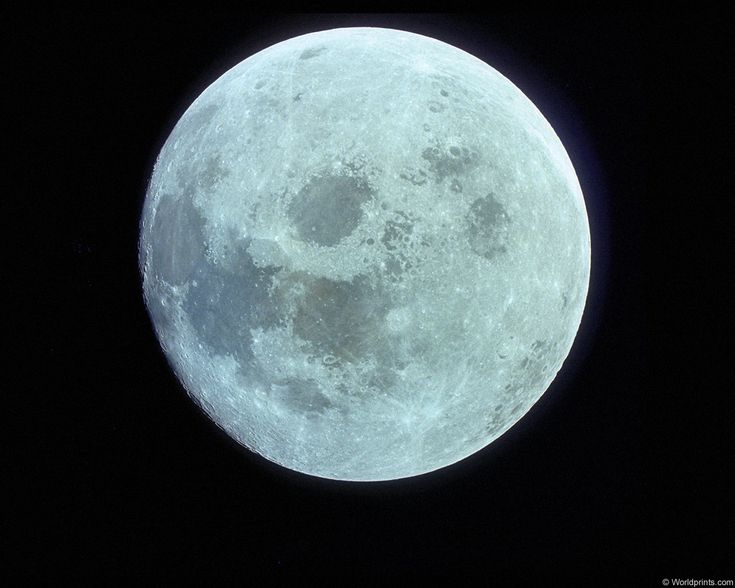 the 13th Moon is called the Blue Moon, this occurs when four full moons fall within the same season (as regular seasons only have 3 full moons, the fourth full moon between solstice and equinox, or vice versa, is   The 13th Moon was called Ruis or Elder. The Blue Moon is considered the 'goal moon.'