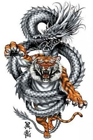 Dragon Tattoo Wallpaper Hd | Tattoo Pictures Gallery