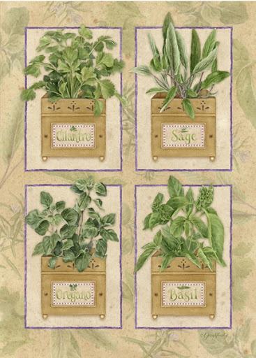 Herbs:  #Herbs.