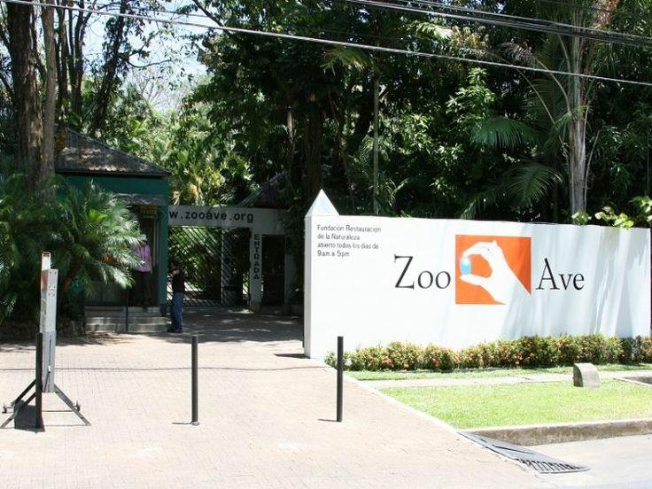 Día en familia en el refugio de rescate Zoo Ave Shelter