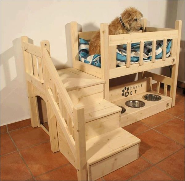 Ingenious Furniture or Accessories for Your Pet - Find Fun Art Projects to Do at Home and Arts and Crafts Ideas