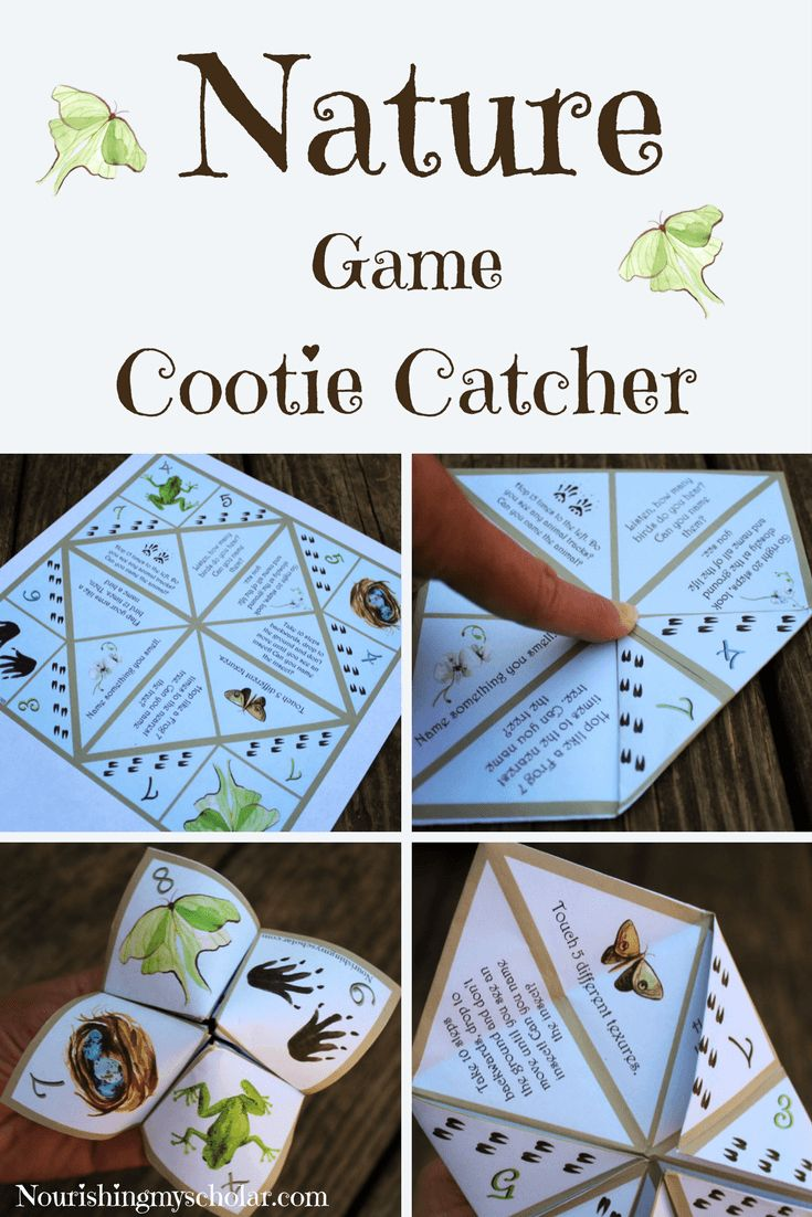 Nature Game Cootie Catcher: This cootie catcher is meant to help children use their senses (sight, smell, hearing, and touch) as they test their knowledge and explore the natural world around them. via @preciouskitty23