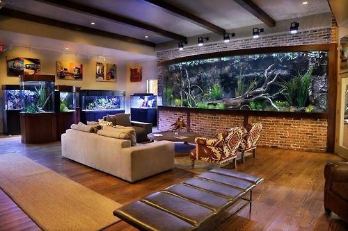 Landowaterandaquaria Theaquablog Aquariuminspiration Fish Room My Future House God That Bog