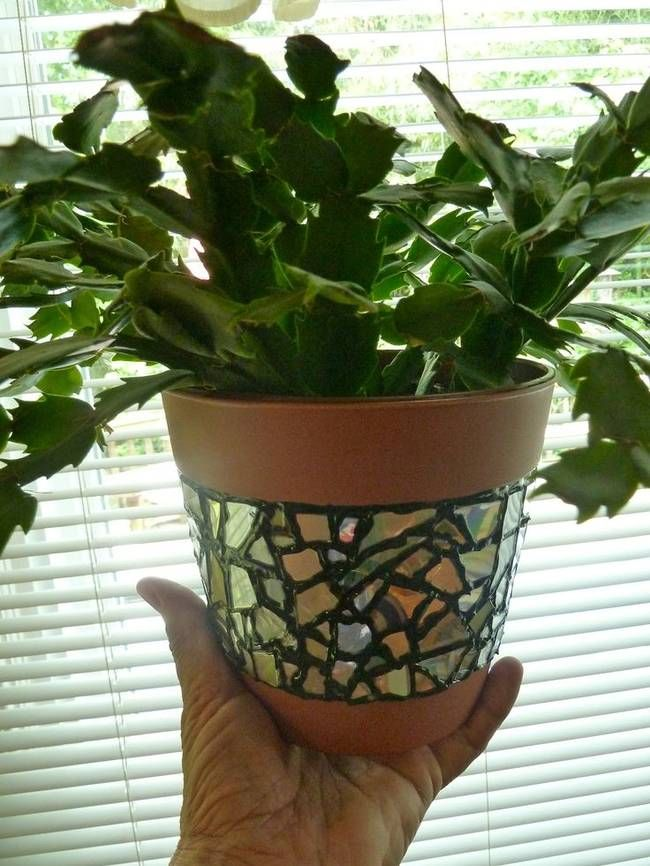 5.) Fancy Pots - f you're looking to take your potted plants up a notch, try creating a cool mosaic out of old CDs. Find the instructions here.