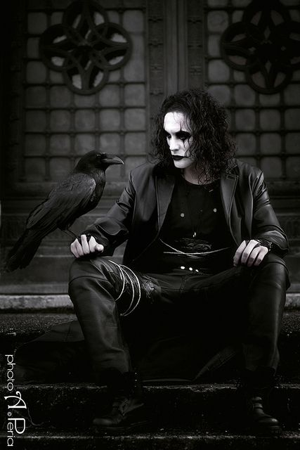 'The Crow' starring Brandon Lee. There were actually 2 different ravens (not crows) used in the movie; their names were 'Omen' and 'Magic'.