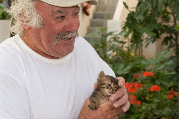 Babis with small cat